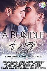A Bundle of Joy: A Winter Romance (Vale Valley Book 12) Kindle Edition
