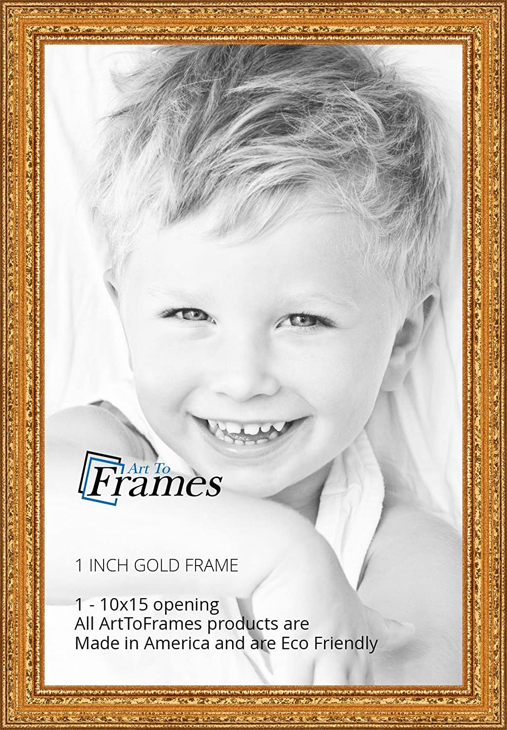 Amazon.com - ArtToFrames 10x15 inch Gold Wood Picture Frame ...