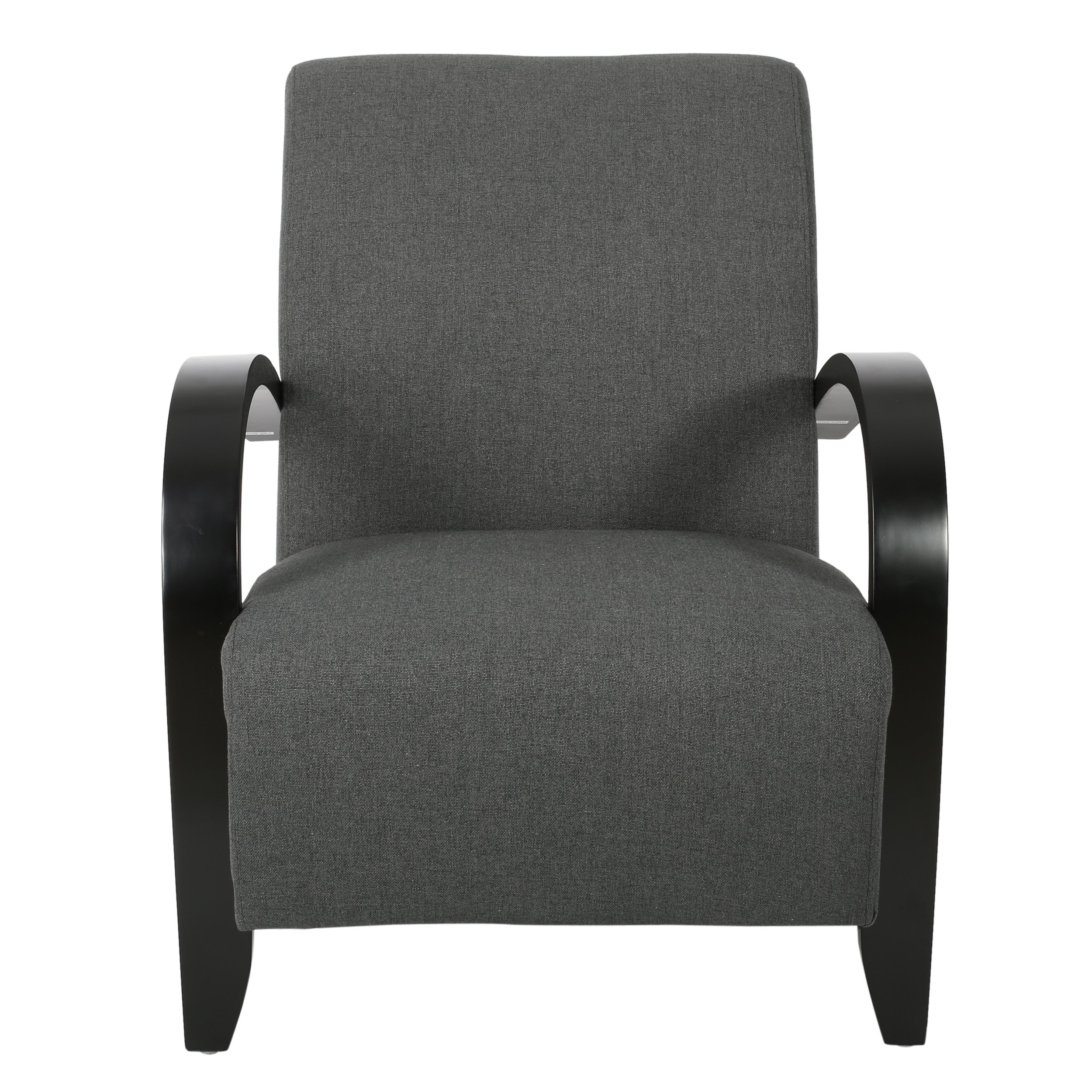 Christopher Knight Home Tobias Fabric Club Chair, Dark Gray by Christopher Knight Home