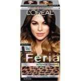 L'Oreal Paris Feria Brush-on Colored Ombre Effect Hair Color