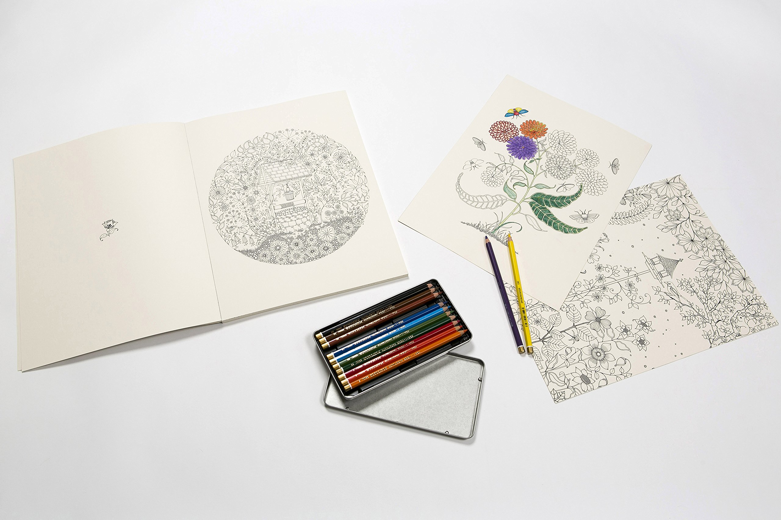 Secret Garden Artists Edition 20 Drawings To Color And Frame Amazoncouk Johanna Basford 9781780677316 Books
