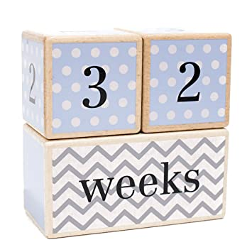 Free Shipping LovelySprouts Milestone Age BlocksSolid WoodBaby Age Phot..