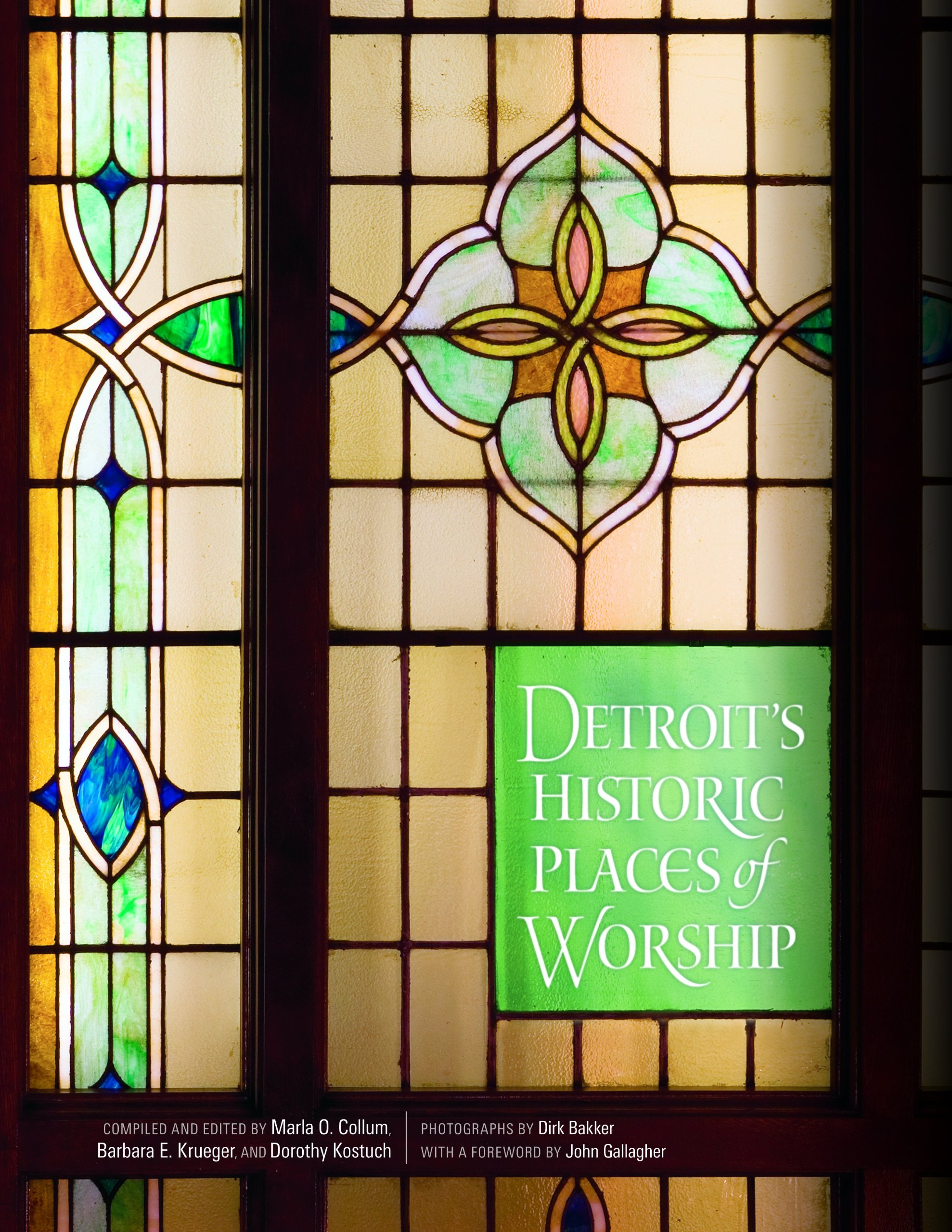 Read Online Detroit's Historic Places of Worship (Painted Turtle) ebook