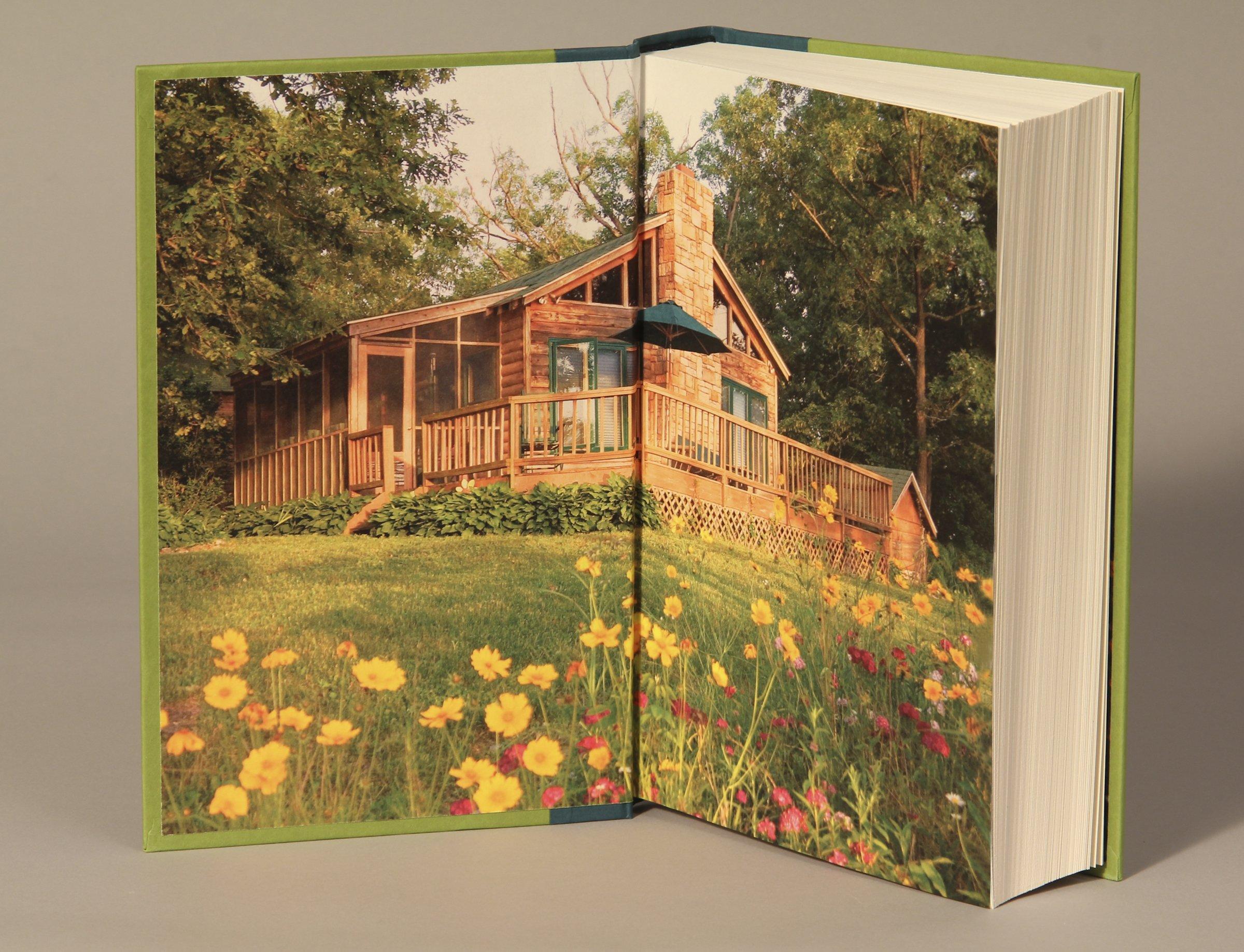 The Witness: Nora Roberts: 9780399159121: Amazon.com: Books