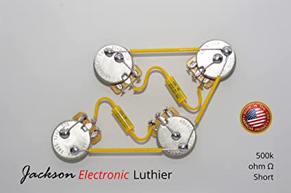 amazon com les paul wiring harness kit custom vintage wiring rh amazon com les paul wiring harness columbus ohio les paul wiring harness cts pots