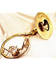 """INDIAN HANDMADE BRASS FINISH 22""""SOUSAPHONE BRASS MADE TUBA MOUTH PIECE WITH BAG"""
