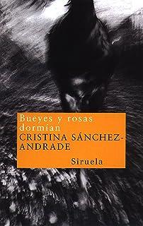 España (Cinco Elementos (dvd)): Amazon.es: Vilas, Manuel: Libros