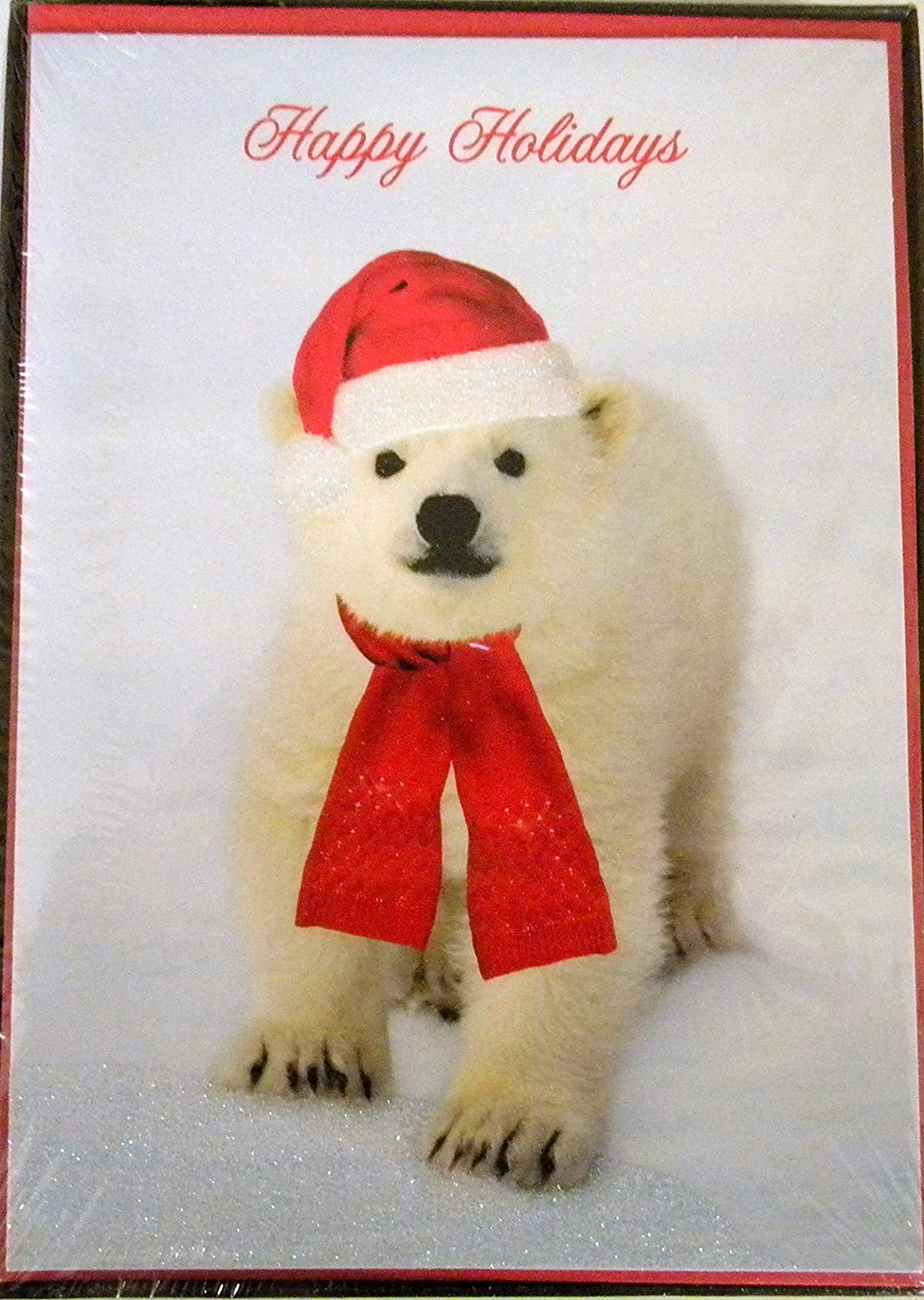 National Geographic Christmas Cards.Amazon Com National Geographic Polar Bear Christmas Cards