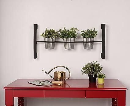 Groves Indoor Herb Garden Hanging 3 Pot Wall Planter, Black