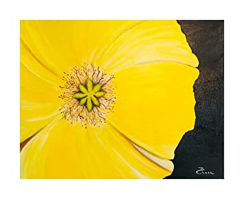 Amazon Original Paintings From By Artist Poppy Flower Paintings