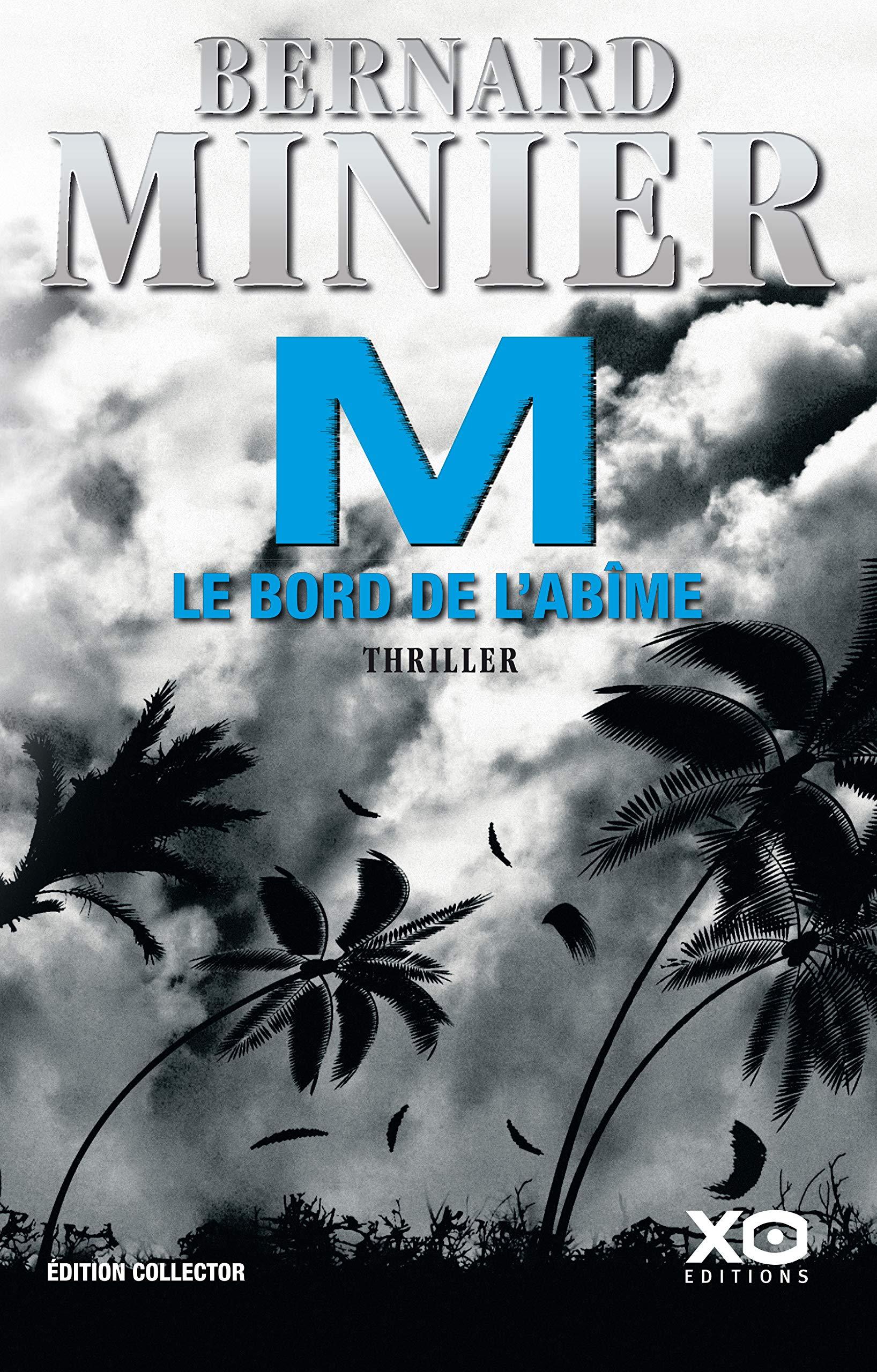 M Le Bord De L Abime Amazon Fr Bernard Minier Livres