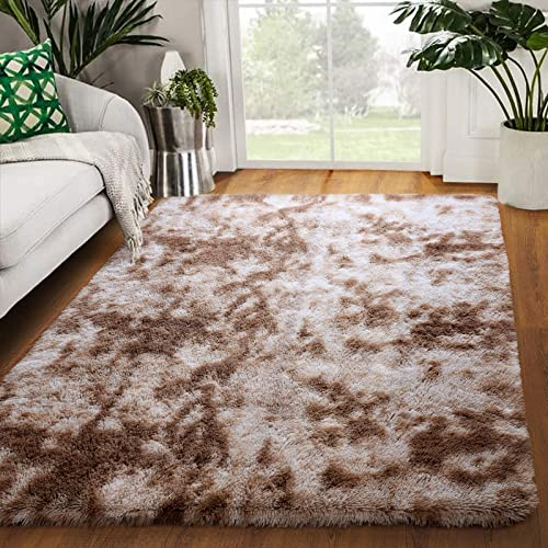 Zareas Modern Luxury Fluffy Bedroom Rug