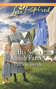 His New Amish Family (The Amish Bachelors)
