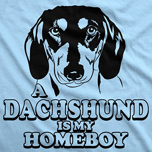281eb2ec7ec5 Amazon.com: Dachshund is My Homeboy T Shirt Funny Weiner Dog Face T Shirts  Clever Tees: Clothing