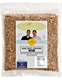 Sorghum Grain by Gerbs - 2 LBS - Top 11 Food Allergen Friendly & NON GMO – Vegan & Kosher – Product of USA