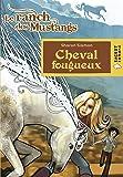 Cheval fougueux (Le ranch des Mustangs)