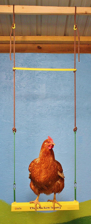 The Chicken Swing: Amazon.co.uk: Pet Supplies