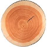 We pay your sales tax 3D Tree Wood Slice Memory Foam Cushion Throw Pillow Doll Seat Pad Home Decor Wood log USA Seller…