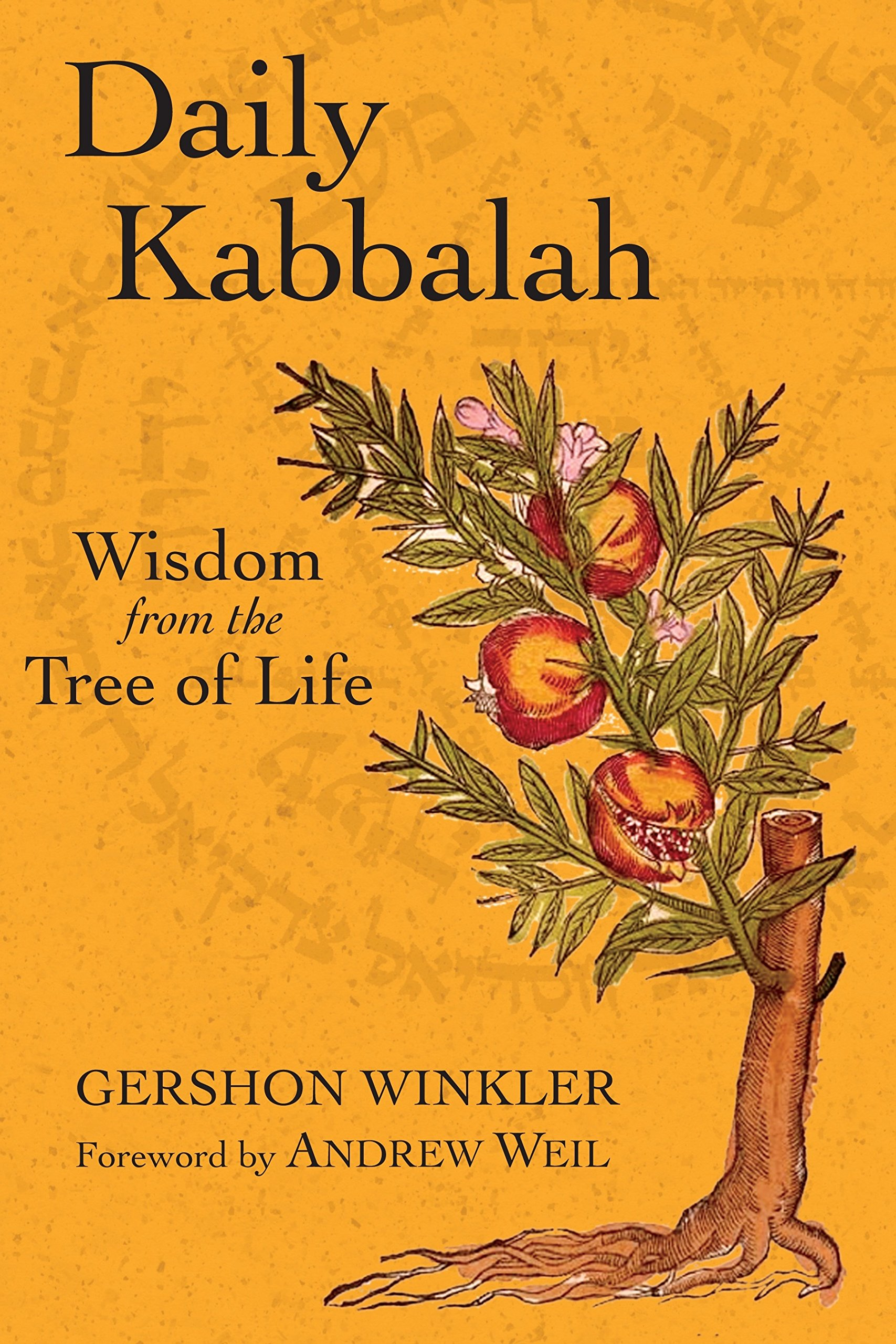 Daily Kabbalah: Wisdom from the Tree of Life