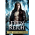 Astoria Files – Feenreich: Die Astoria Files-Reihe, Band 2 (Urban Fantasy)