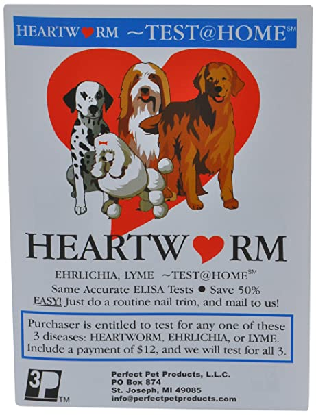 heartworm test for dogs