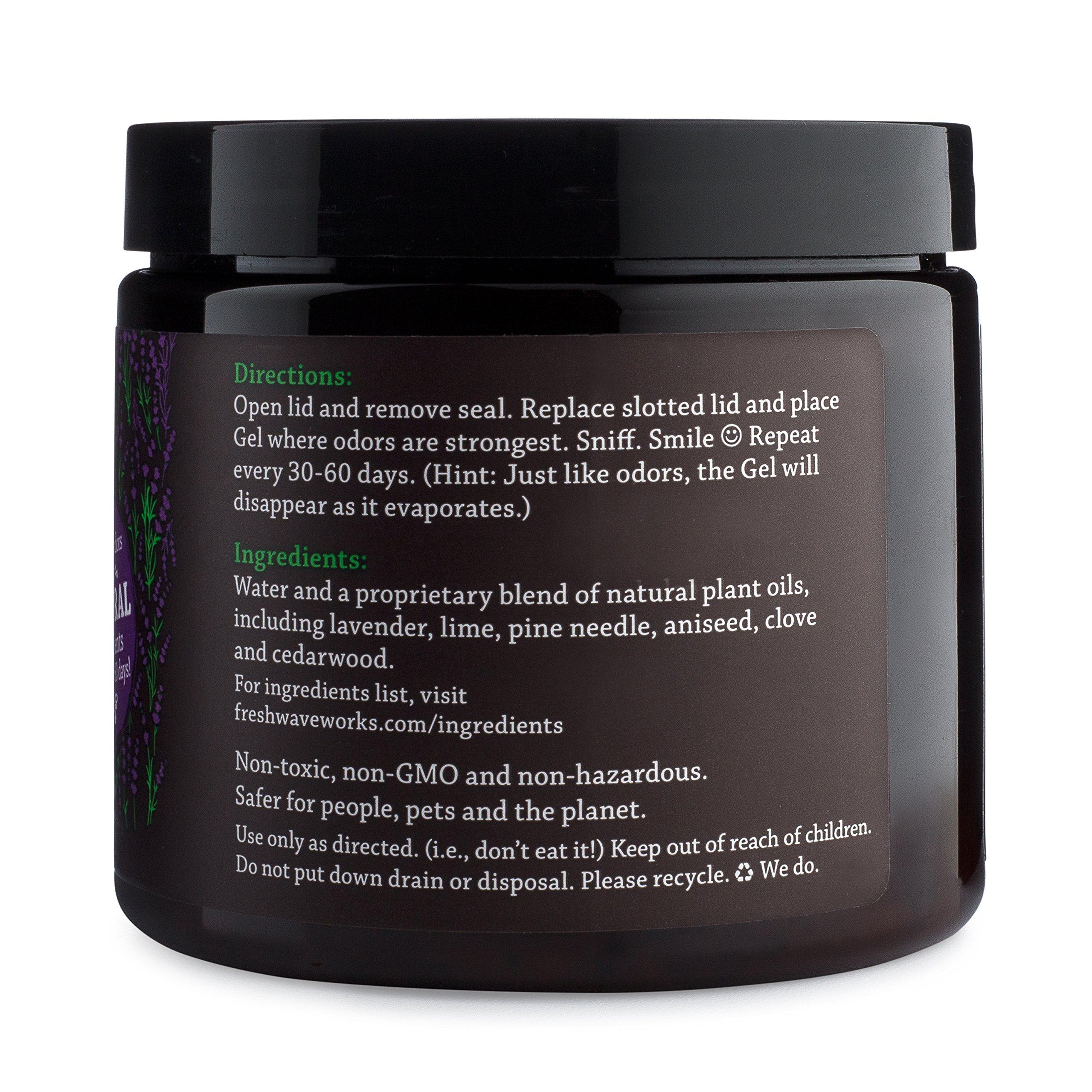 Fresh Wave Lavender Odor Removing Gel, 15 oz.