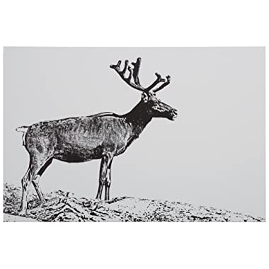 Rivet Black and White Canvas Print of Male Deer, 15  x 10