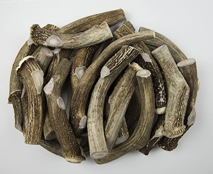 Antler Man Premium Jumbo Deer Antler Pieces - Dog Chews - Sold by The Pound