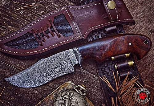 Bobcat Knives – 10-inch Overall, Black Fish, Hunting Bowie Knife – Full Tang Fixed Blade Damascus Steel – Walnut Wood Handle with Leather Sheath