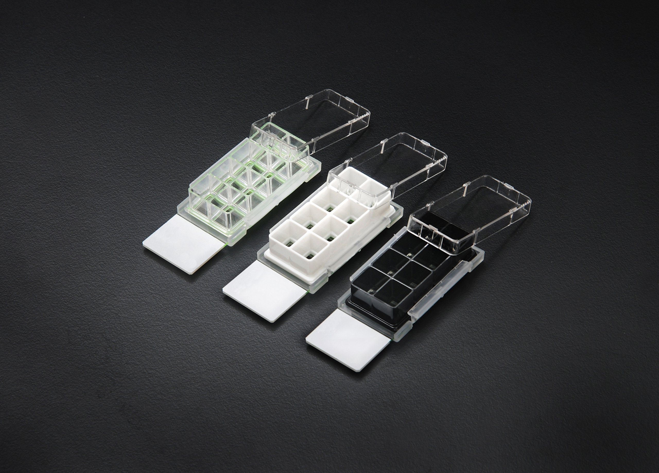 Nest Scientific 230112 Cell Culture Chamber Slides, 2 well with glass slide, 4.55 cm2, 1.2-2.5 mL, 2.952'' Length, 0.59'' Height, 0.984'' Width, Glass, 0.18 fl. oz., Black (Pack of 12)