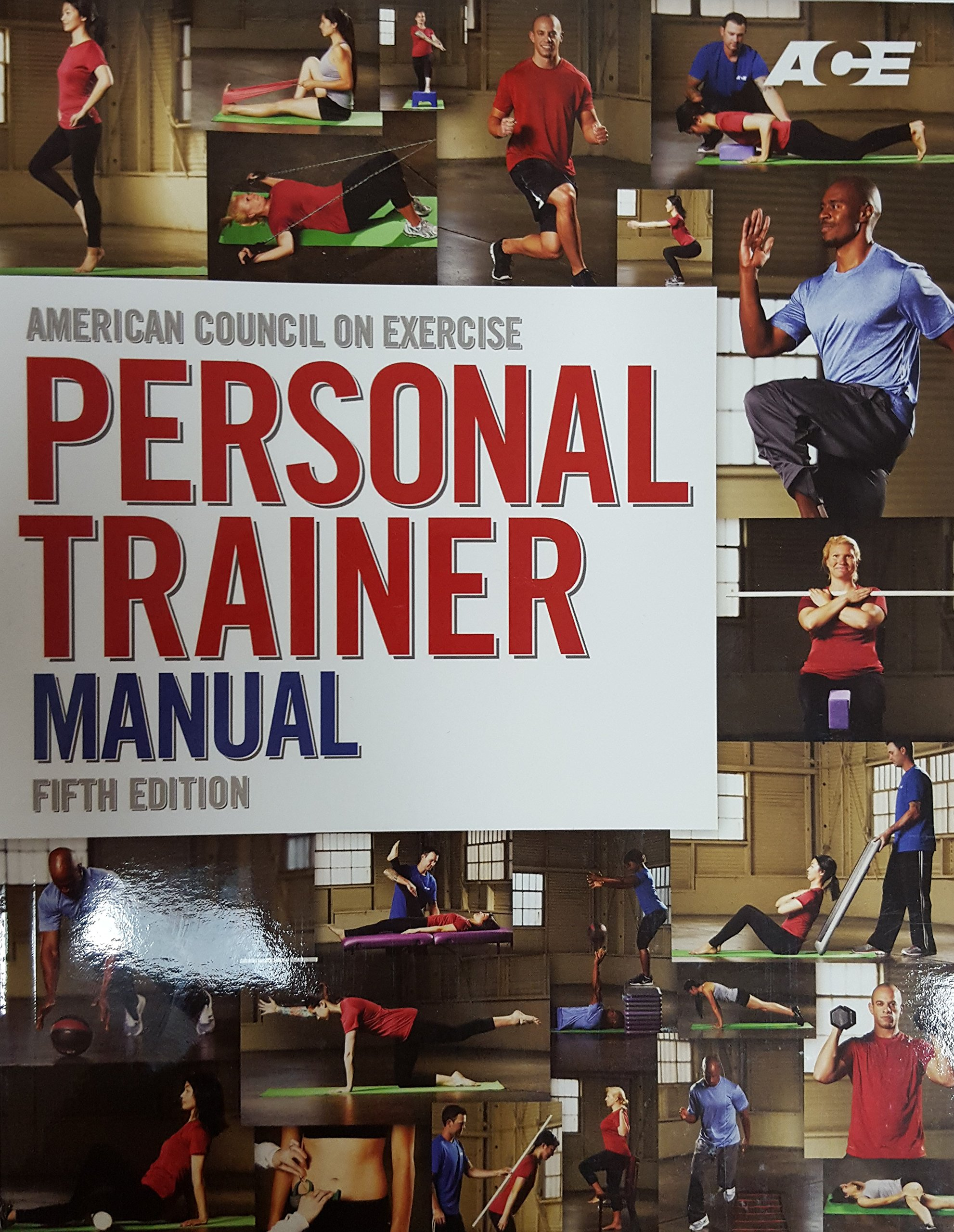 ace personal trainer manual 5th edition pdf American Council on Exercise Personal Trainer Manual, 5th Edition ...