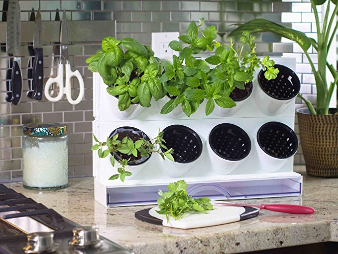Watex Pixel Garden Desktop, Kitchen Farm, White best windowsill herb garden