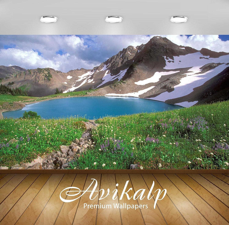 Buy Avikalp Exclusive Awi1747 Landscape Nature Beauty Full