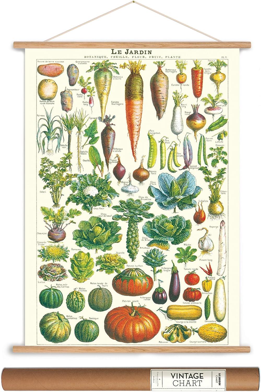 Amazon.com: Cavallini Papers Jardín Verduras estilo clásico ...