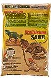 Reptile Sciences Terrarium Sand, 10-Pound, Natural Sedona