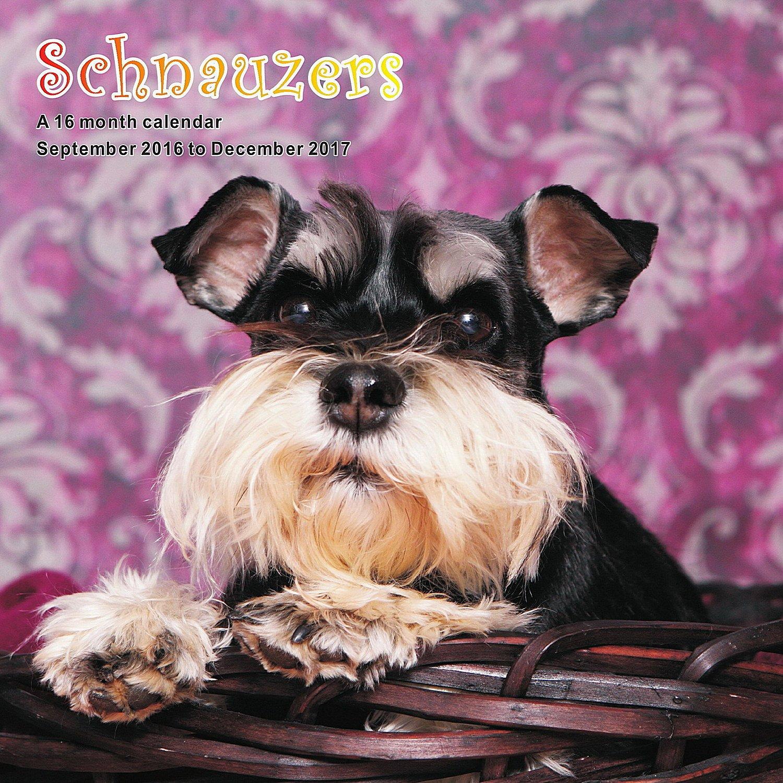Schnauzer Calendar - 2017 Wall Calendars - Calendar 2016 - Dog Breed Calendars - Monthly Wall Calendar by Magnum