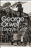 Essays (Penguin Modern Classics)
