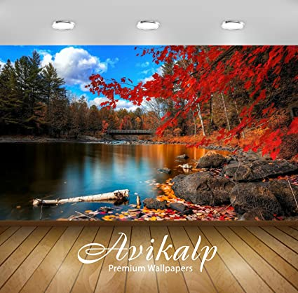 Avikalp Exclusive Awi1549 Beautiful Scenery Full HD Wallpapers (7 x 6 ft)