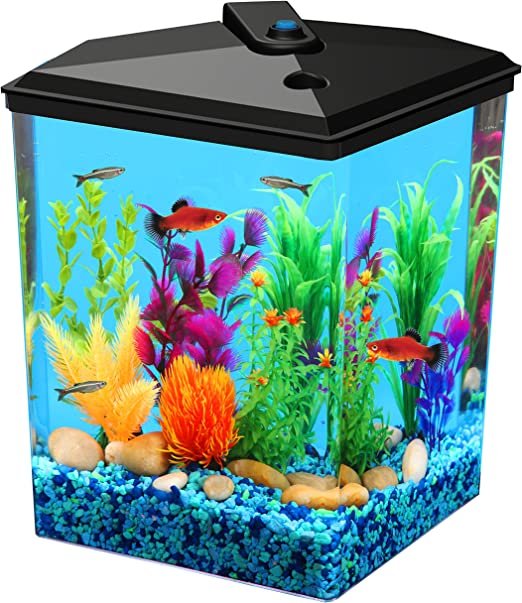 Amazon Com Koller Products Aquaview 2 5 Gallon Fish Tank With Power Filter And Led Lighting Fish Tank Pet Supplies
