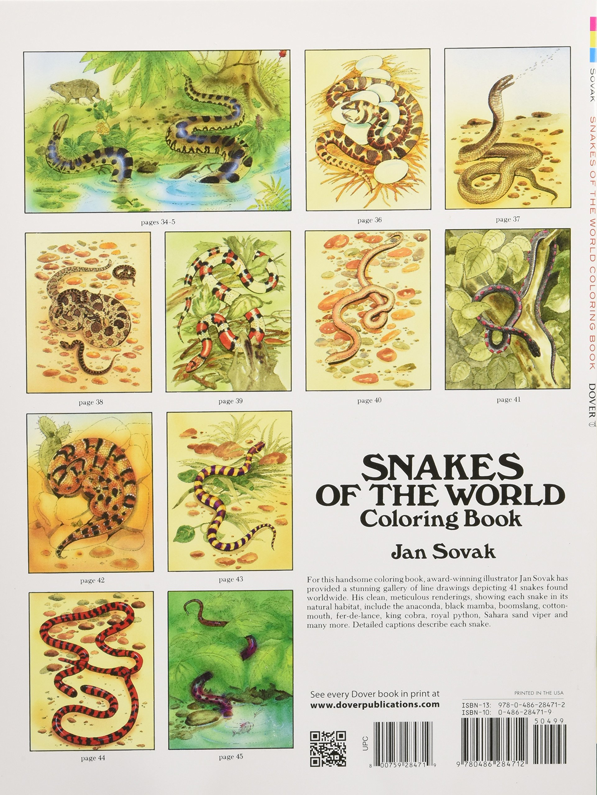 The zoology coloring book - Snakes Of The World Coloring Book Dover Nature Coloring Book Jan Sovak 0800759284719 Amazon Com Books