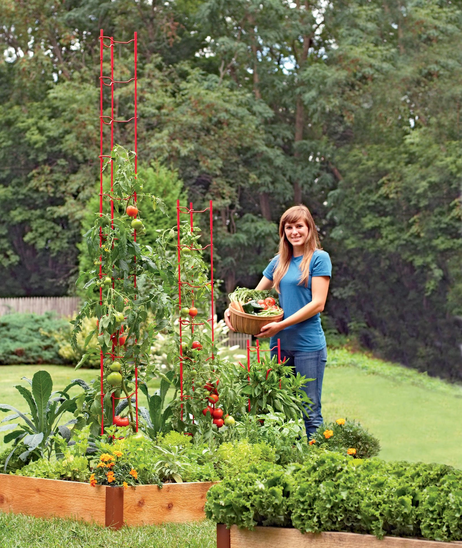 Stacking Tomato Ladders, Tomato Supports for The Garden Set of 6, Heavy Gauge Steel 22''-78'' Tall