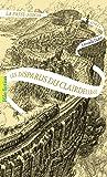 La passe-miroir (Livre 2) - Les Disparus du Clairdelune