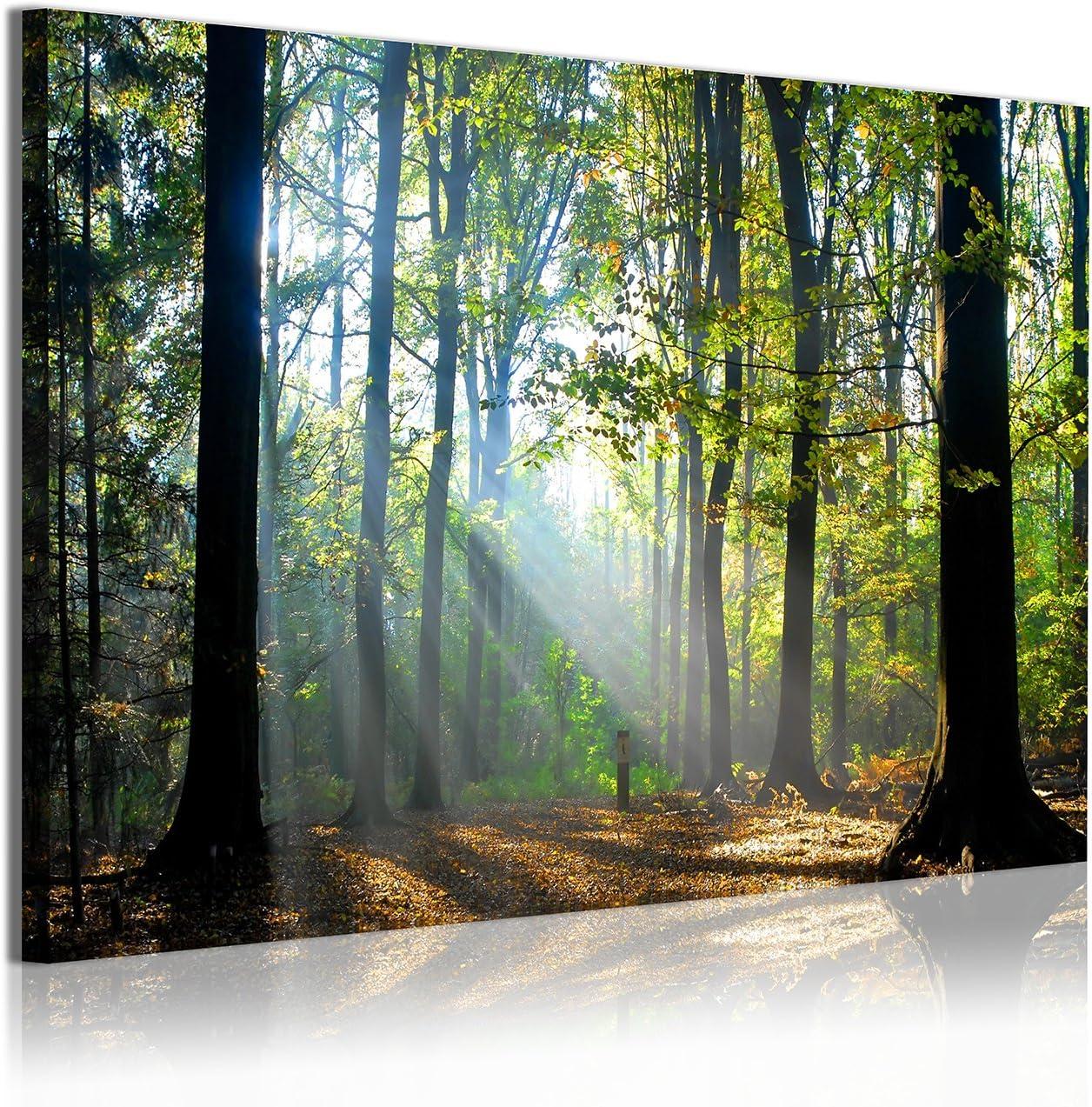 DekoArte Cuadros Modernos Impresión de Imagen Artística Digitalizada, Lienzo Decorativo para Tu Salón o Dormitorio, Estilo Paisaje Bosques Árboles con Rayos de Sol Naturaleza, Multicolor, 120x3x80 cm