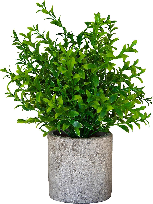 Small Artificial Plants in Pots for Home Decor Fake Faux Feaux Face Decorative Plant Decoration Arrangements Mini Artificial Potted Plants Greenery Decor Shelf Desk Office (Green Bamboo Flower, 1)