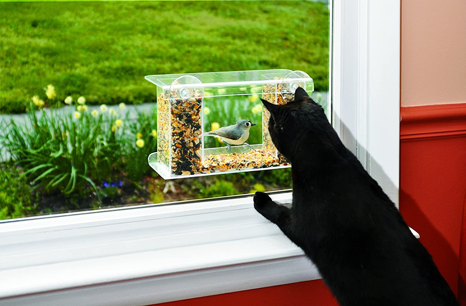Window bird feeder cat - Amazon Com One Way Mirror Birdfeeder One Way Mirror Bird Feeder Close Up Window Feathered Friends 12 L X 4 3 8 W X 7 H Wild Bird Feeders Patio