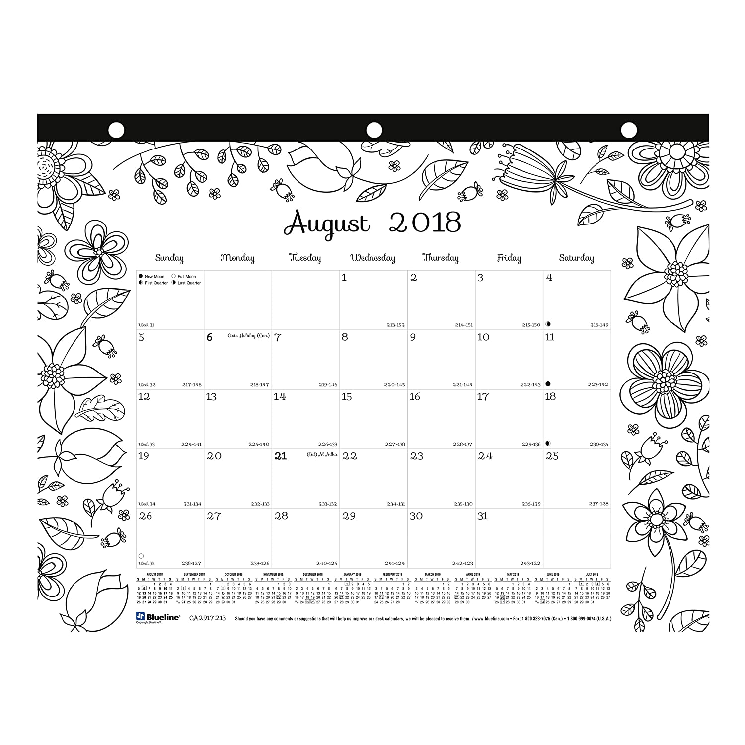 Blueline 2018-2019 DoodlePlan Academic Coloring Desk Pad Calendar, Garden Designs, August 2018 to July 2019, 11 x 8.5 inches (CA2917213-19) REDIFORM OFFICE PRODUCTS