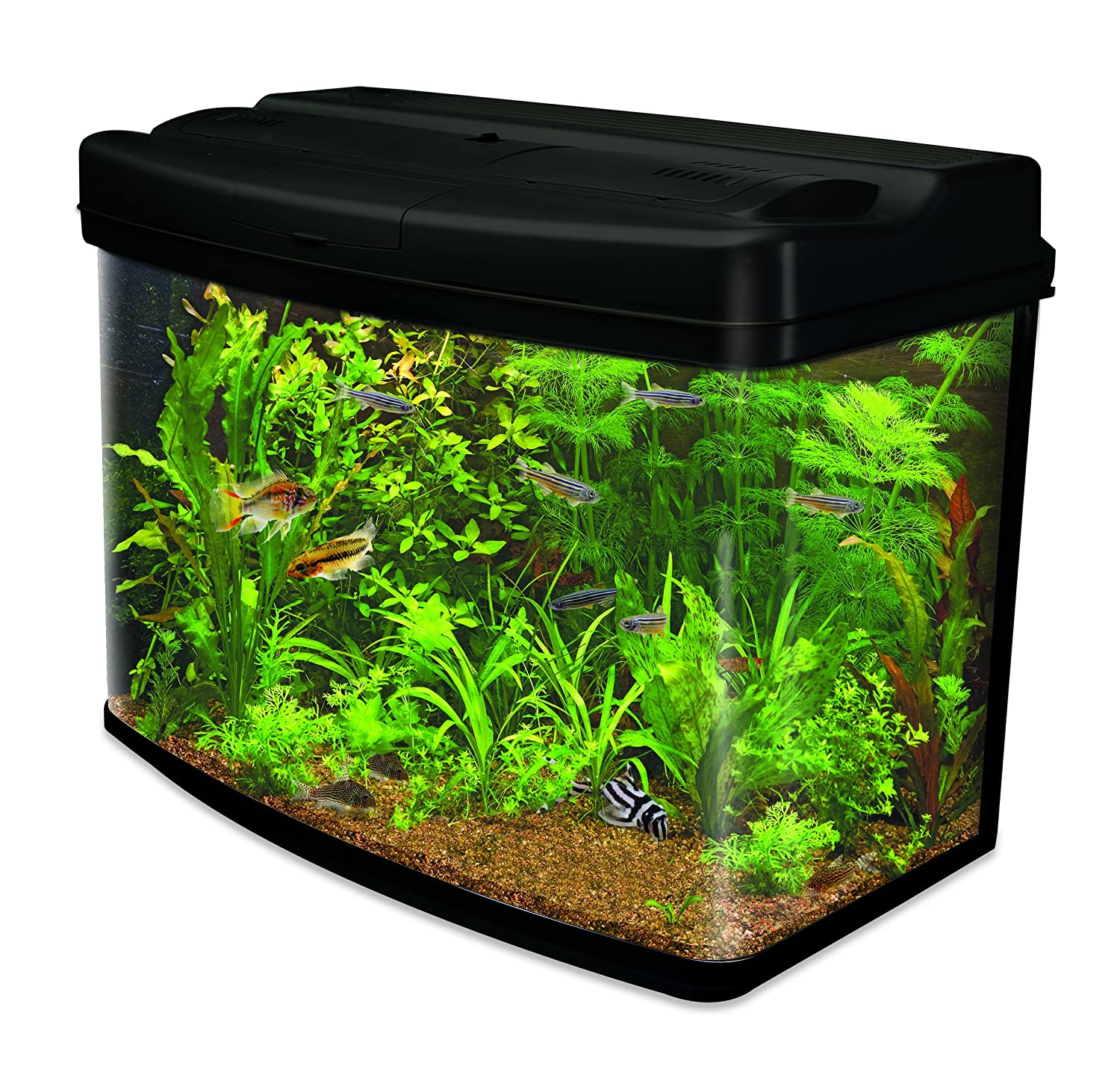 Interpet Fish Pod Glass Aquarium Fish Tank Including CF3 Cartridge