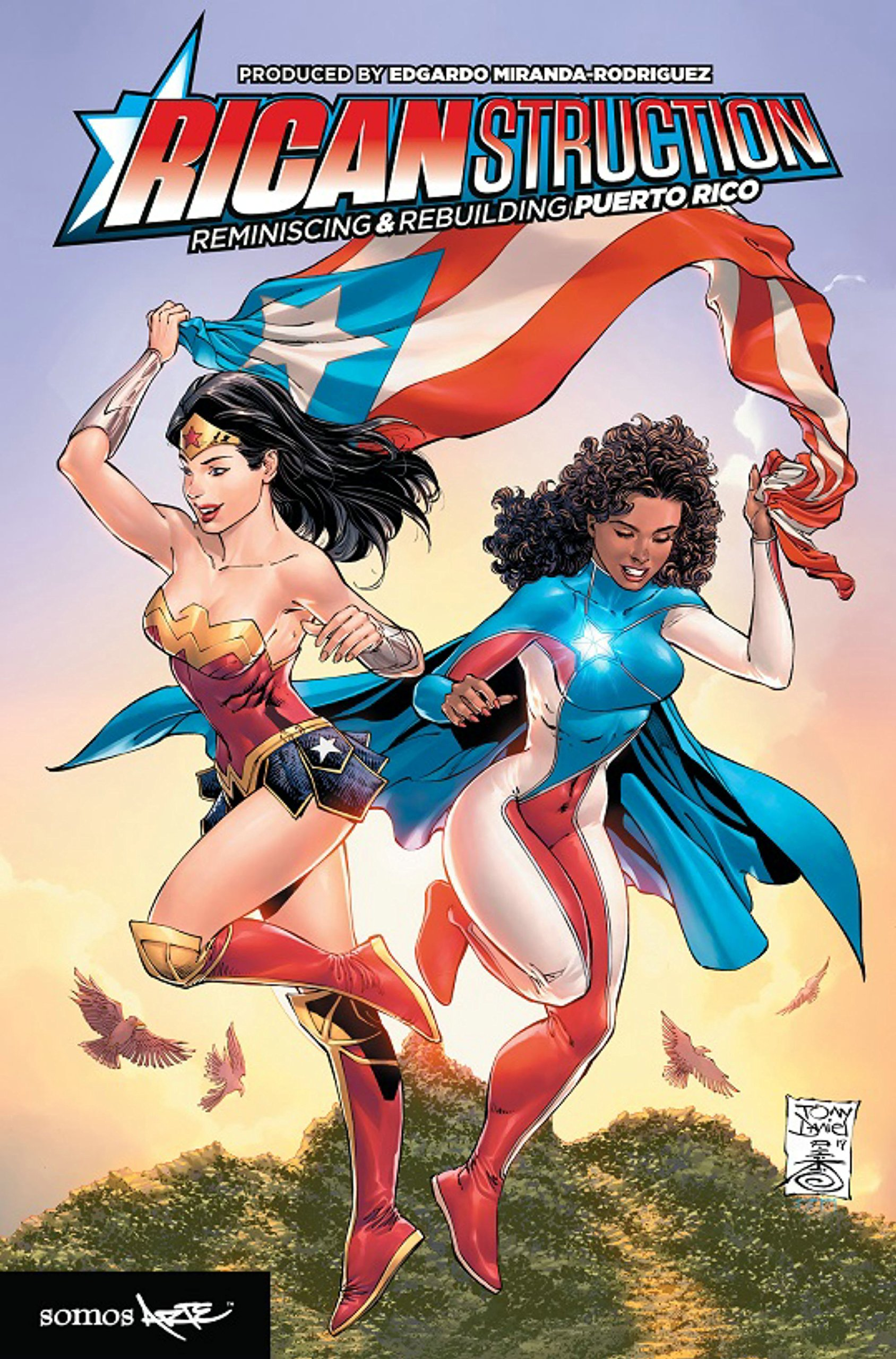 the cover for Ricanstruction