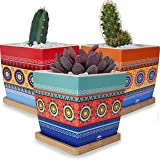 Small Ceramic Succulent Planter Pots with Drainage Holes and Tray Saucers for Plants, Flowers, Cactus and Succulents - Cute Mini Decorative Indoor Plant Flower Pot Set and Bamboo Trays Garden Planters