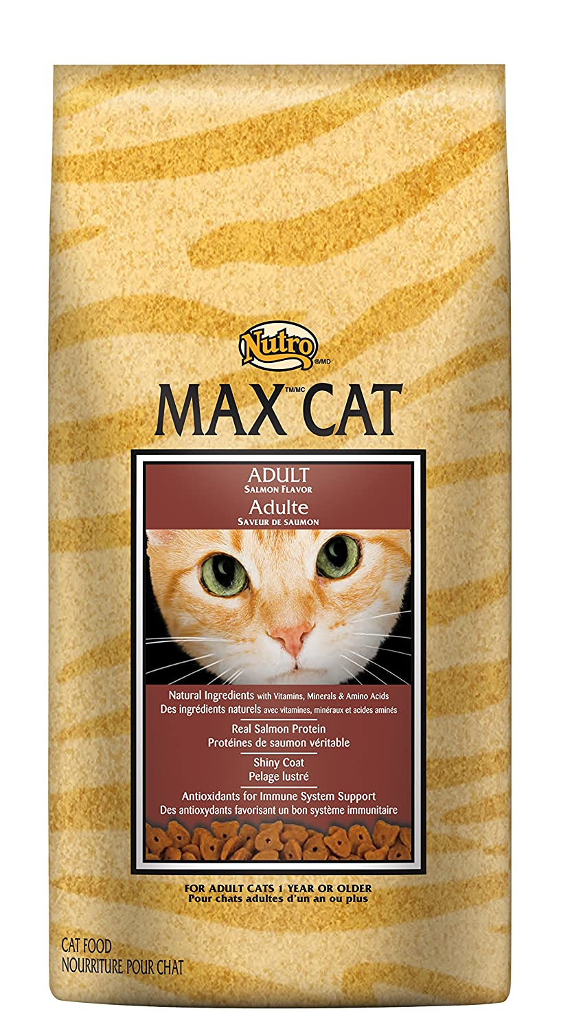 Amazon nutro max cat adult dry cat food salmon 16 lbs amazon nutro max cat adult dry cat food salmon 16 lbs rich in nutrients and full of flavor supports healthy joints healthy skin and coat forumfinder Choice Image